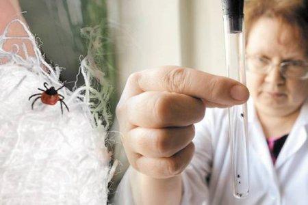 С 22 апреля 2019 года лаборатория особо опасных вирусных инфекций ФБУЗ ФЦГиЭ Роспотребнадзора начинает проведение исследований на инфицированность клещей, снятых с людей
