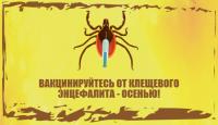 Осень – время вакцинации против клещевого вирусного энцефалита
